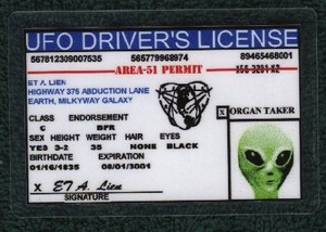 Similar to possesing a License for driving a UFO... technically there is no such thing as a Forklift Truck Driver's License!